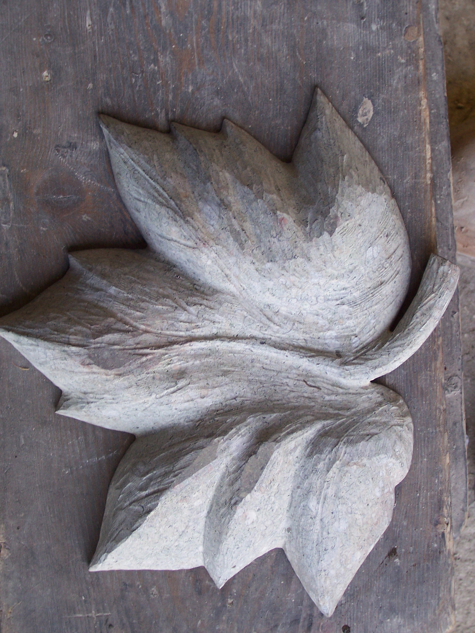 Carved Maple Leaf (underside)