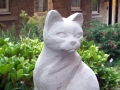 Cat - front.