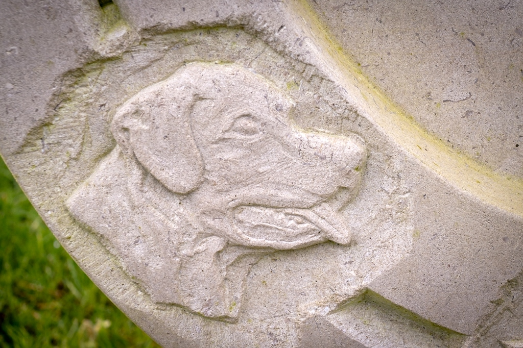 Detail of a dog's head from a bespoke, horseshoe-shaped headstone, carved in Portland stone for a customer.