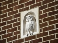 Stone carved owl set in a garage wall in Swanage.