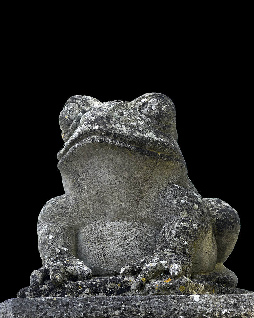 Carved stone toad by Jonathan Sells, Dorset