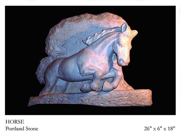 Horses – Equine