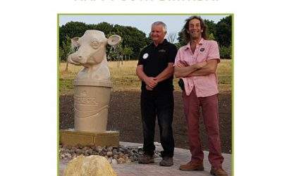 Purbeck Stone Cow Fountain in 'The Dubber' Magazine
