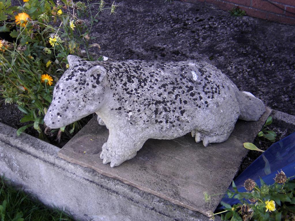 Stone badger.